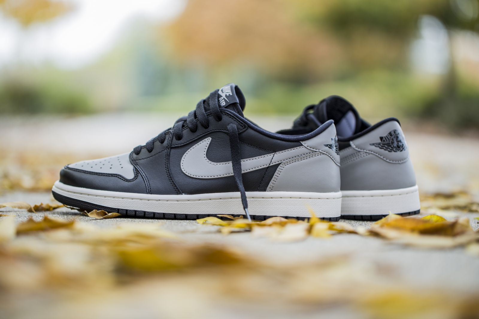 Air Jordan 1 Low Shadow
