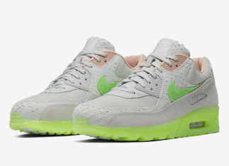 Nike Air Max 90 Platinum New Species CQ0786-001 Release Date