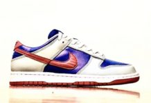 Nike Dunk Low Samba CZ2667-400 2020 Release Date First Look