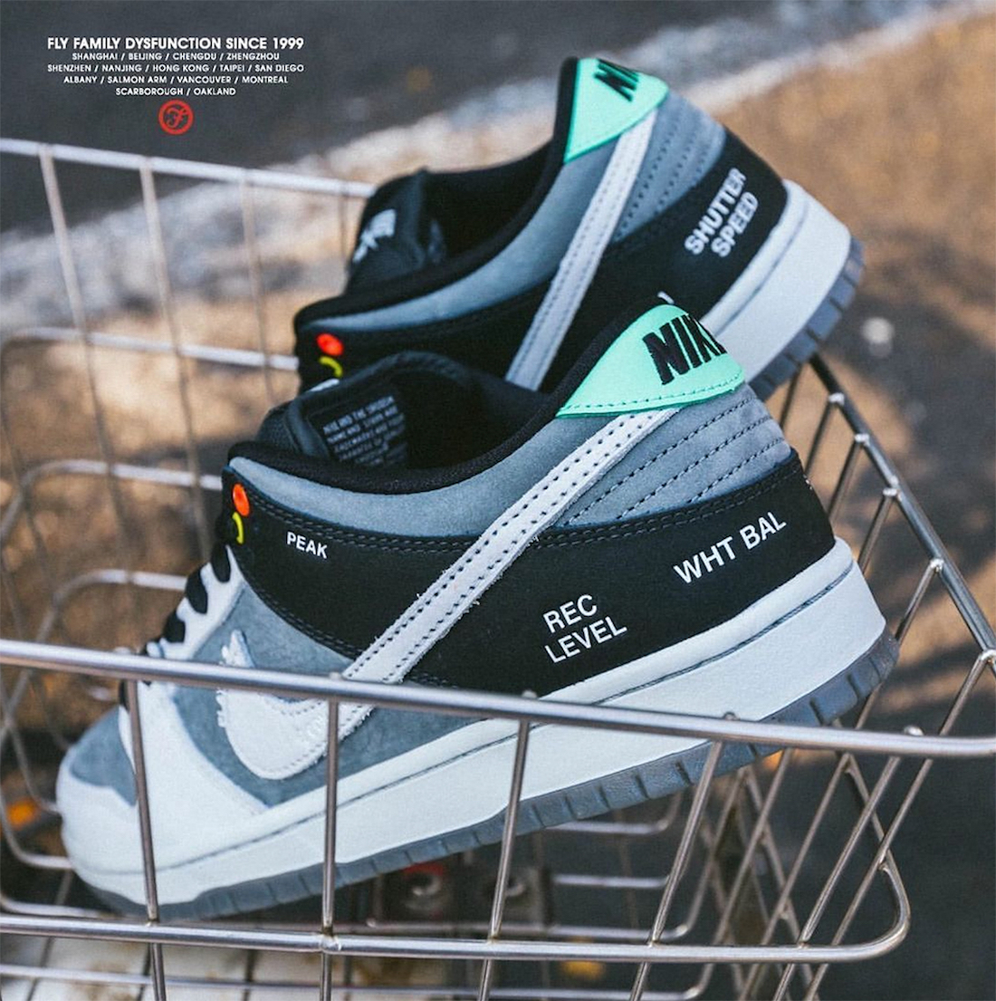Nike SB Dunk Low Camcorder Release Date